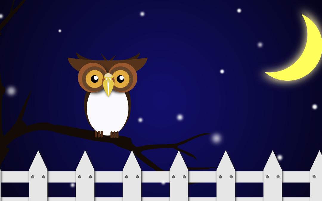 Cartoon Owl on Branch at Night